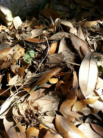 Nature makes soil out of leaf litter. If you put rock down, the leaf litter will still come. It will create a layer of soil on top of your rock and in the end the rock layer and soil layer will be indistinguishable.